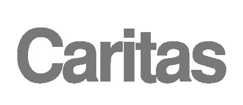 Caritas Projekt (https://www.caritas.at)