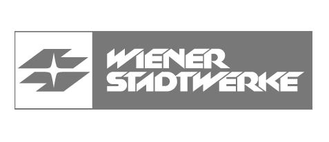 Ausbildungsprogramm für die Wiener Stadtwerke (https://www.wienerstadtwerke.at/)